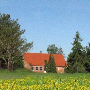 Ferienhaus Wiesenhof  in Hohenwoos